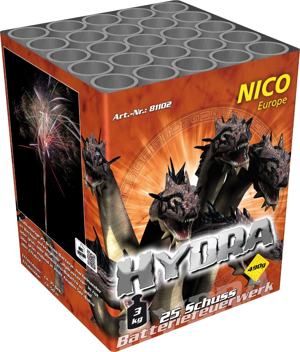 Hydra Feuerwerk 25 Schuss